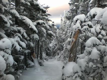 White Mountain 1