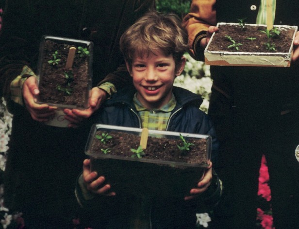 David Plants crop
